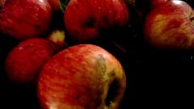 Wayward Wandering manzanas