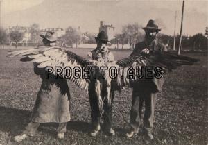 Imagen de avesproject